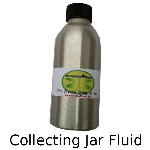 Insect collecting jar fluid